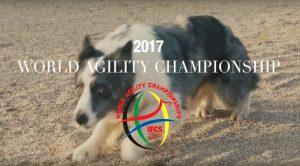 World-Agility-Championship-Godella-2017