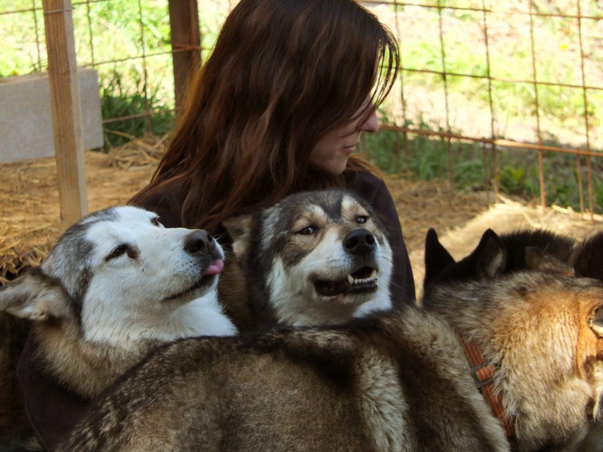 Creando equipo. Una familia musher (II)
