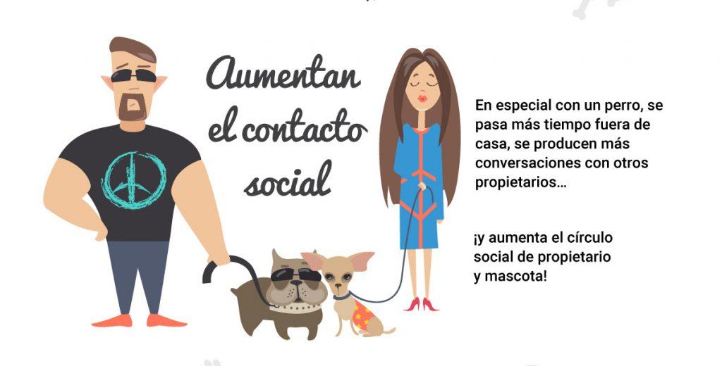 infografia-mascota-vida-01 rct img