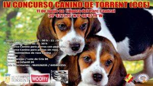 Concurso-Canino-Torrent