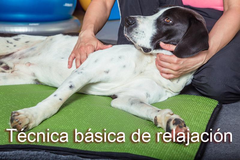 Técnica-básica-relajación