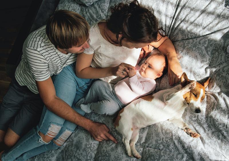 Llegada-bebé-casa-perro