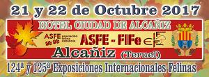 ASFE _Alcaniz2017
