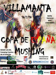 Copa-de-España-de-Mushing_Villamanta-2018