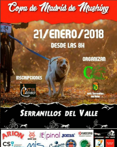 Copa-de-Madrid-de-Mushing