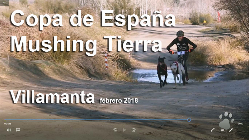Mushing-Villamanta