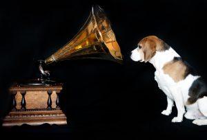 Música-amansa