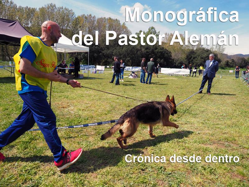 Monografica del Pastor Alemán
