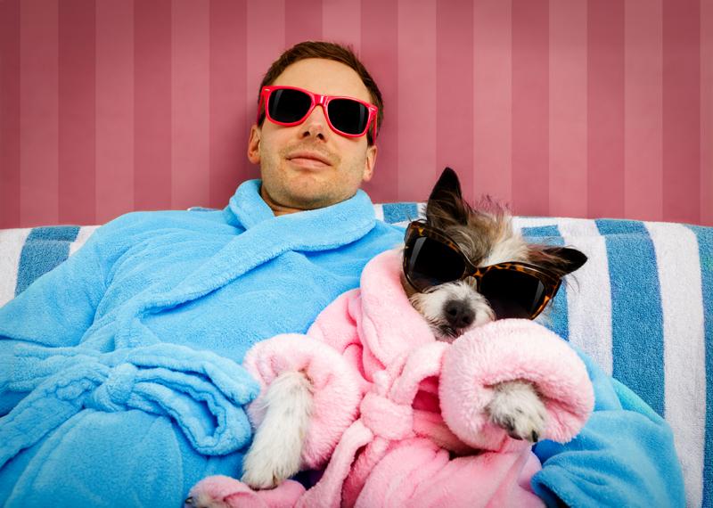 personalidades-propietarios-podrían-influir-en-perros