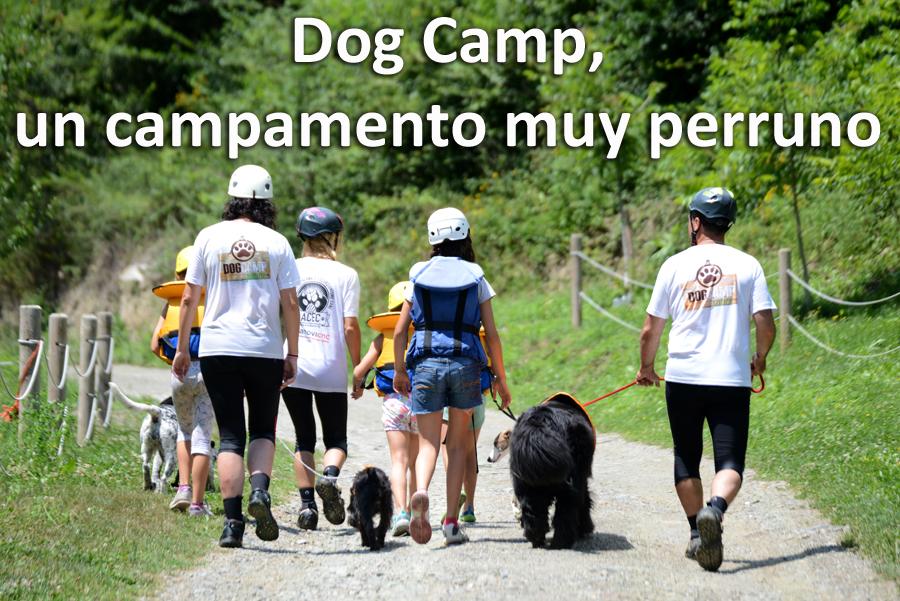 Dog Camp-ACEC