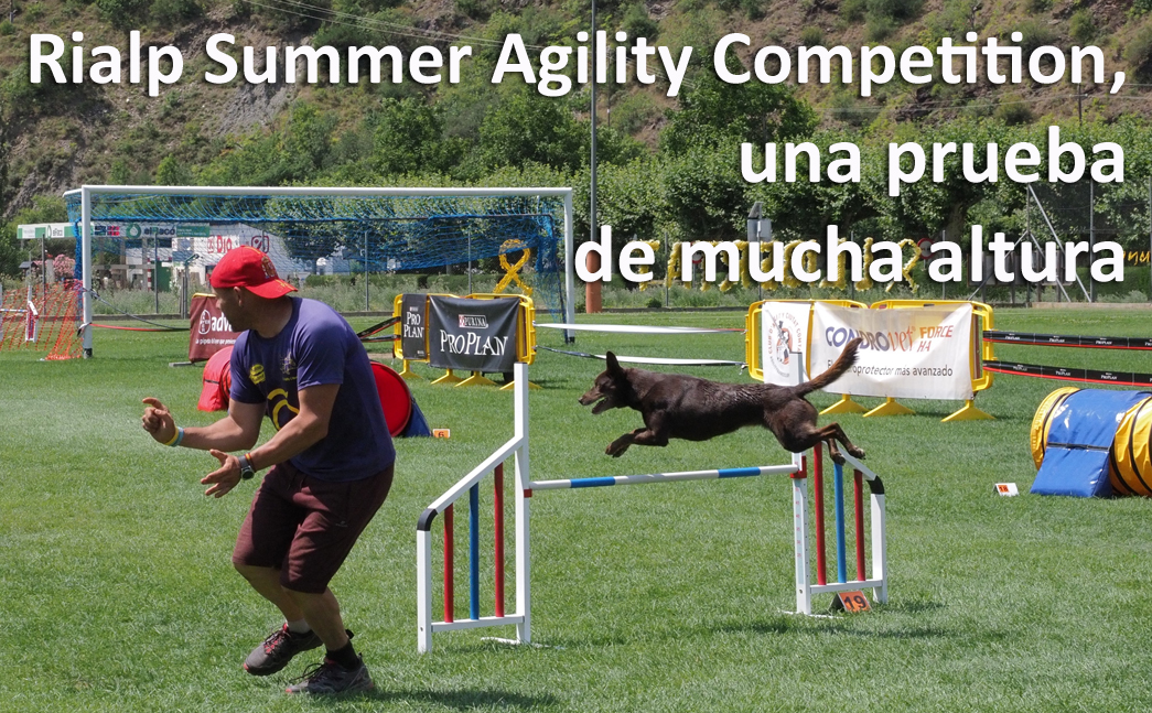 Rialp-Summer-Agility-Competition