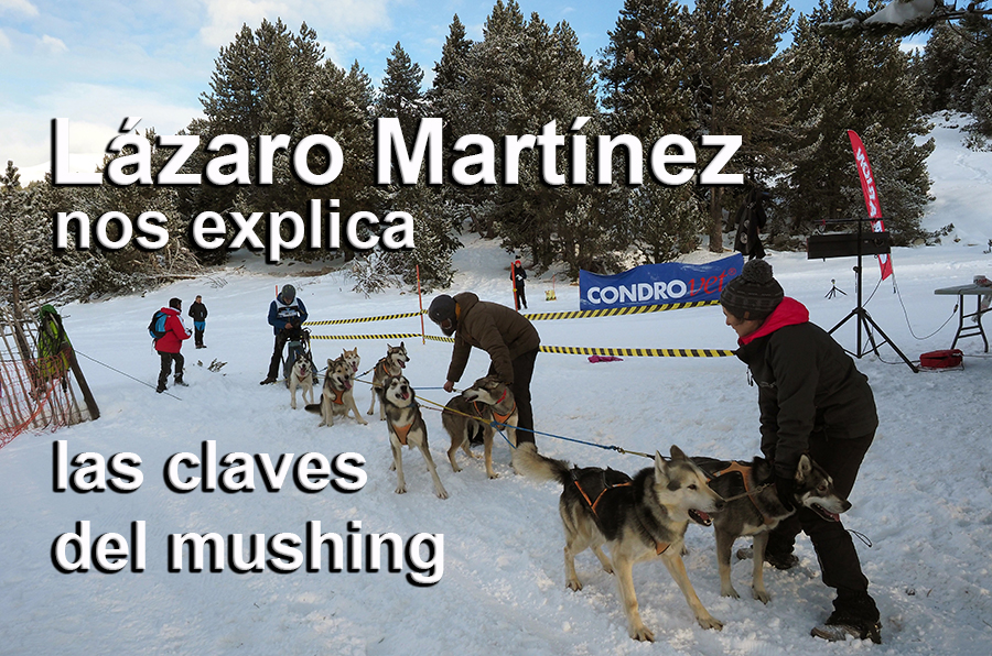 Lázaro Martínez