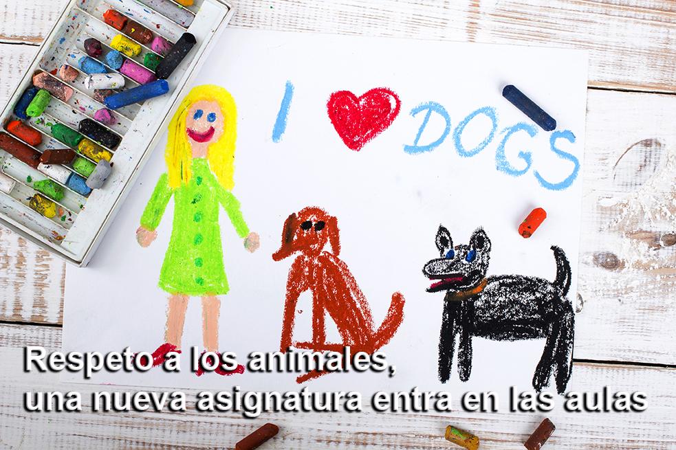 respeto-animales