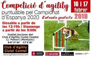 agility cc