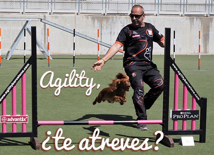 Agility_atrévete