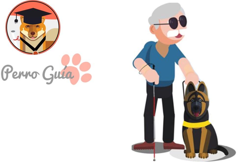 Cómo comportarse ante un perro guía. Normas básicas
