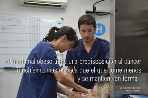 Dr. Pizá_Quirófano