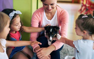 La empatía hacia los animales entra en el currículo escolar y abre la puerta a una educación más solidaria, pacífica y altruista