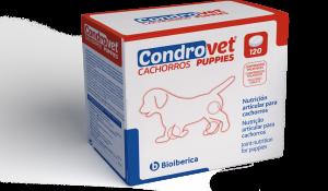condrovet-forceha-pup-box