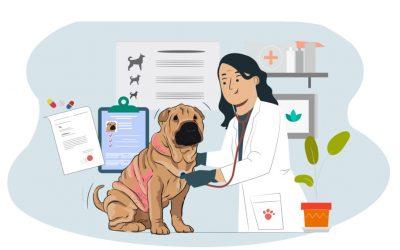 La dermatitis atópica en tu perro