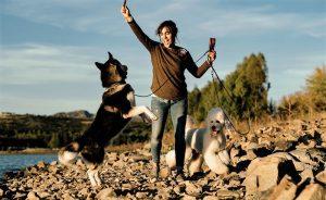 Patricia Campos_estilista canina
