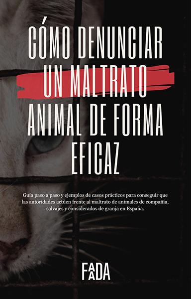 Cómo denunciar un maltrato animal de forma eficaz