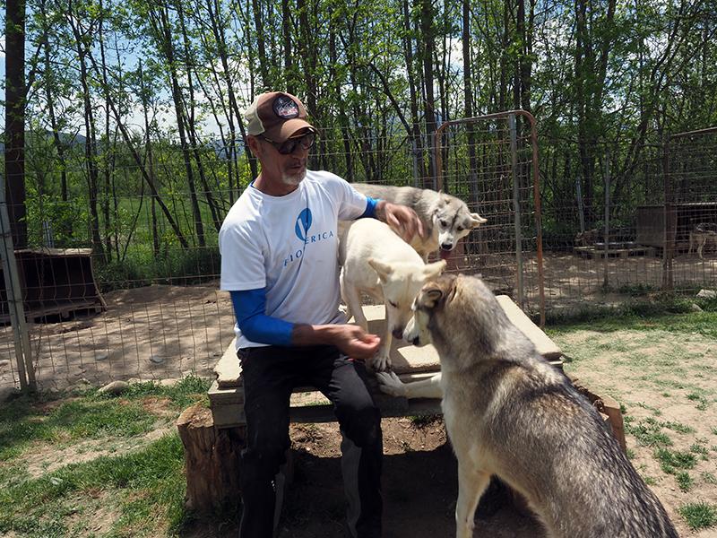 Lázaro y sus huskies, un vínculo perfecto