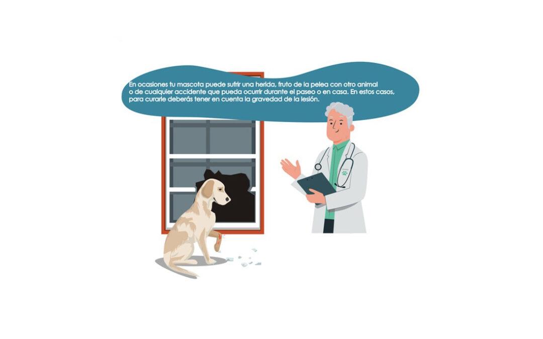 Cómo curar las heridas de tu mascota